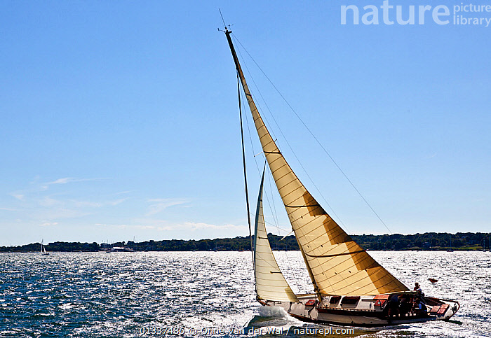 """Kestrel"" sailing upwind during Classic Yacht Regatta, Newport, Rhode Island, September 2010.  ,  BOATS,CLASSICS,COASTS,FORESAILS,FREEDOM,MAINSAILS,NORTH AMERICA,PROFILE,regattas,SAILING BOATS,SUNNY,USA,WOODEN,YACHTS,CONCEPTS  ,  Onne van der Wal"
