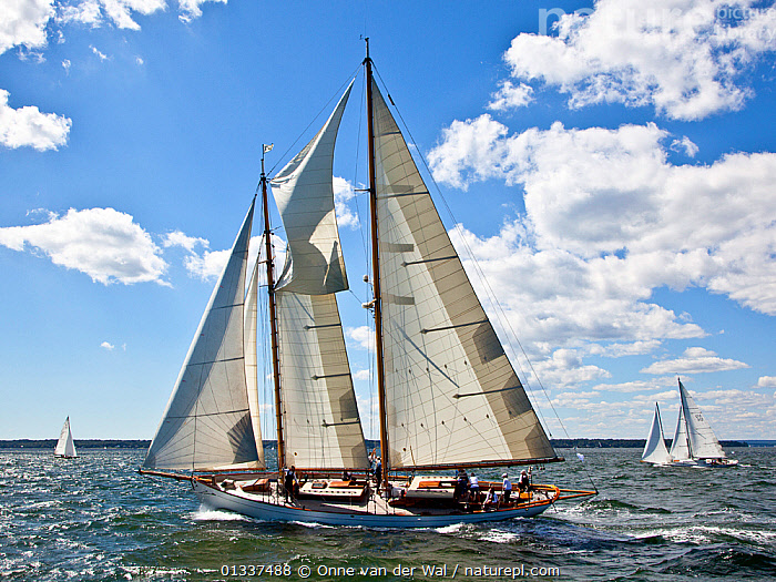 Classic Yacht Regatta, Newport, Rhode Island, September 2010.  ,  BOATS,CLASSICS,COASTS,FORESAILS,MAINSAILS,NORTH AMERICA,PROFILE,REGATTAS,SAILING BOATS,TOPSAILS,USA,WOODEN,YACHTS  ,  Onne van der Wal