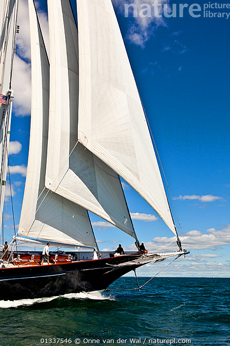 Detail of foresails on board superyacht during the Newport Bucket Regatta, Rhode Island, September 2010.  ,  BOATS,BOWS,FORESAILS,MEGA YACHTS,MS,NORTH AMERICA,RACES,REGATTAS,SAILING BOATS,SUPERYACHTS,USA,VERTICAL,YACHTS,BOAT-PARTS  ,  Onne van der Wal
