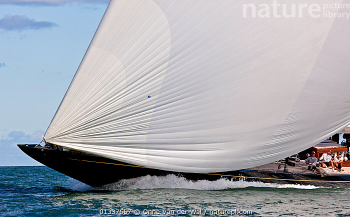 Detail of spinnaker on board superyacht during the Newport Bucket Regatta, Rhode Island, September 2010.  ,  ABSTRACT,BOATS,BOWS,MEGA YACHTS,MS,NORTH AMERICA,OBSCURED,PROFILE,RACES,REGATTAS,SAILING BOATS,SPINNAKERS,SUPERYACHTS,USA,YACHTS,BOAT-PARTS,SAILS  ,  Onne van der Wal