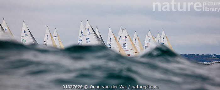 Fleet racing in the J80 World Championships, Newport, Rhode Island, USA, October 2010.  ,  ARTY SHOTS,ATMOSPHERIC,BOATS,CHOPPY,FLEETS,KEELBOATS ,LOW ANGLE SHOT,NORTH AMERICA,OBSCURED,PANORAMIC,RACES,RACING,SAILING BOATS,SAILS,WAVES,USA  ,  Onne van der Wal