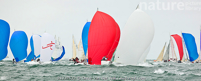 Fleet racing under spinnaker in the J80 World Championships, Newport, Rhode Island, USA, October 2010.  ,  BOATS,CHOPPY,FLEETS,FRONT VIEWS,KEELBOATS ,NORTH AMERICA,PANORAMIC,PROFILE,RACES,RACING,SAILING BOATS,SPINNAKERS,USA,SAILS  ,  Onne van der Wal