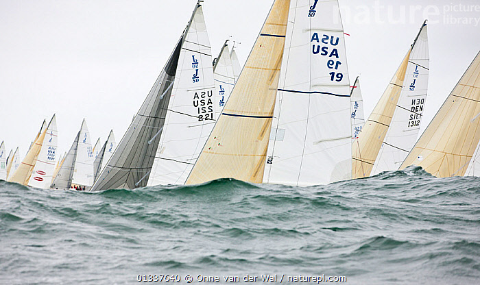 Fleet obscured by wave during racing in the J80 World Championships, Newport, Rhode Island, USA, October 2010., ABSTRACT,ARTY SHOTS,BOATS,CHOPPY,CONCEPTS,FLEETS,KEELBOATS ,LOW ANGLE SHOT,NORTH AMERICA,OBSCURED,RACES,RACING,SAILING BOATS,SAILS,WAVES,USA,core collection xtwox, Onne van der Wal
