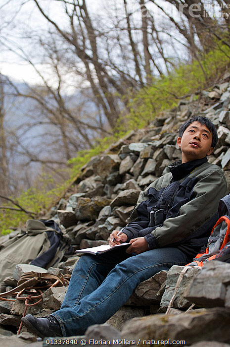 Dr. Zhao Qing observing Golden snub-nosed monkeys (Rhinopithecus roxellana qinlingensis) in Zhouzhi Nature Reserve, Qinling Mountains, Shaanxi, China, April 2006  ,  CONSERVATION,ENDANGERED,LANDSCAPES,MAN,MONKEYS,MOUNTAINS,OUTDOORS,PEOPLE,RESEARCH,VERTICAL,WOODLANDS,Asia  ,  Florian Möllers