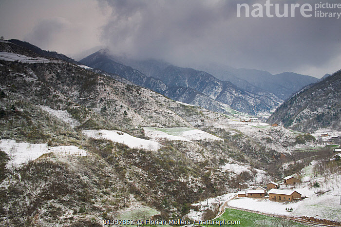 Snowy spring landscape of Chinese farming village in Zhouzhi Nature Reserve, Qinling Mountains, Shaanxi, China, April 2006  ,  ASIA,BUILDINGS,CHINA,LANDSCAPES,MOUNTAINS,RESERVE,SNOW,SPRING,VILLAGES  ,  Florian Möllers