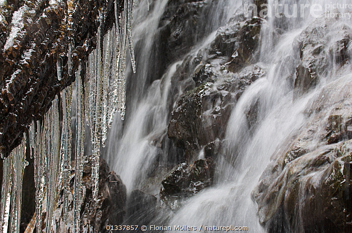 Icicles at a waterfall in Zhouzhi Nature Reserve, Qinling Mountains, Shaanxi, China  ,  ABSTRACT,ARTY SHOTS,ASIA,CHINA,ICE,ICICLES,RESERVE,RIVERS,WATERFALLS  ,  Florian Möllers
