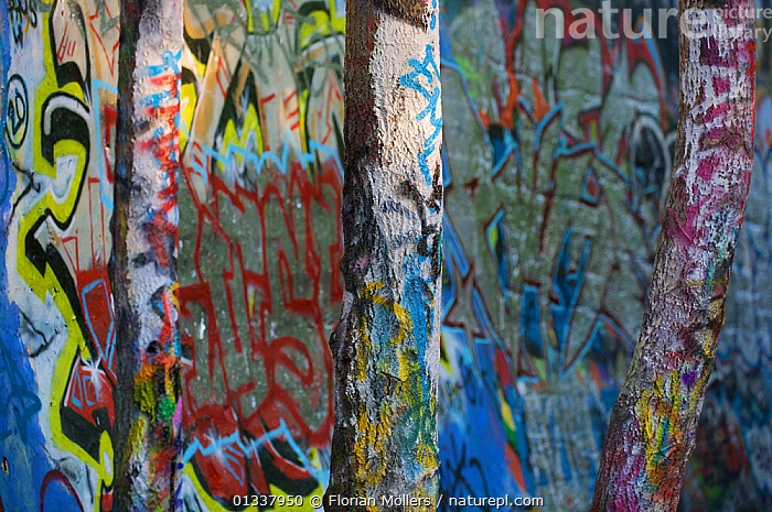 Graffiti art on trees at the border of Naturpark Schsneberger Sydgelsnde, Berlin, Germany. May 2009  ,  COLOURFUL,EUROPE,GERMANY,GRAFFITI,MODERN ART,TREES,TRUNKS,PLANTS  ,  Florian Möllers