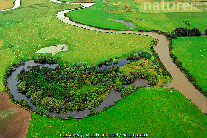 Aerial view of an oxbow lake cut off from a silted meandering river. Southland plains, South Island, New Zealand, October 2007  ,  AERIALS,'DICK',EROSION,LAKE,LAKES,LANDSCAPES,MEANDER,MEANDERING,MEANDERS,NEW,NSIL/G.,OXBOW,OX BOW,OXBOWS,OX BOWS,PHOTO,R.,RIVER,RIVERS,ROBERTS,SILT,SILTATION,SILTED,WATER,WETLAND,WETLANDS,ZEALAND  ,  Visuals Unlimited