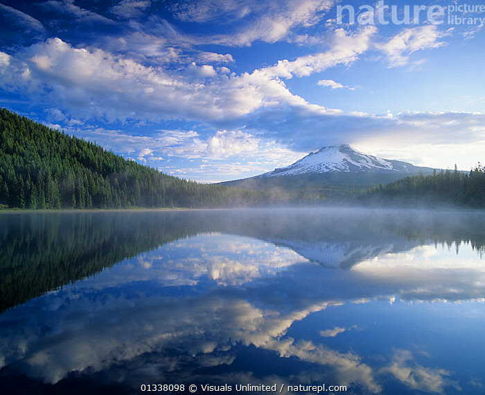 Mt. Hood and clouds mirrored on misty Trillium Lake, Mt. Hood Wilderness Area, Mt. Hood National Forest, Oregon, USA.  ,  79754709,AREAS,CLOUDS,CONIFEROUS,DORMANT,FOREST,FORESTS,HOOD,LAKE,LAKES,LANDSCAPES,MIST,MISTS,MISTY,MOUNTAIN,MOUNTAINS,MT.,NATIONAL,NORTH AMERICA,OREGON,PEAK,PEAKS,REFLECTION,REFLECTIONS,RESERVE,SKY,SNOWY,TRILLIUM,USA,VOLCANO,VOLCANOES,WILDERNESS,Weather,Geology  ,  Visuals Unlimited