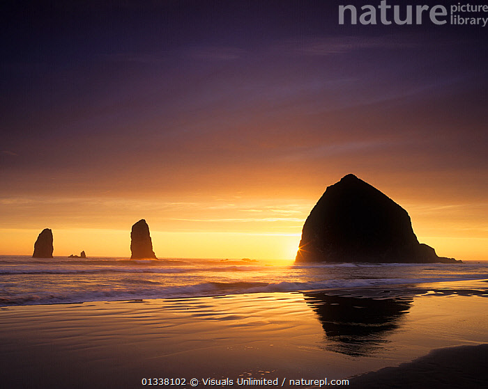 Haystack Rock and other sea stacks silhouetted at sunset, Cannon Beach, Oregon, USA.  ,  79754674,ADAM,BEACH,BEACHES,CANNON,COAST,COASTS,DUSK,EROSION,HAYSTACK,JONES,LANDSCAPES,NORTH AMERICA,OCEAN,OCEANS,OREGON,PACIFIC,ROCK,SEA,SEAS,SEASCAPE,SEASTACK,SEASTACKS,SHORE,SHORES,SILHOUETTE,SILHOUETTES,STACK,STACKS,SUNSET,SUNSETS,TWILIGHT,USA,WAVE  ,  Visuals Unlimited