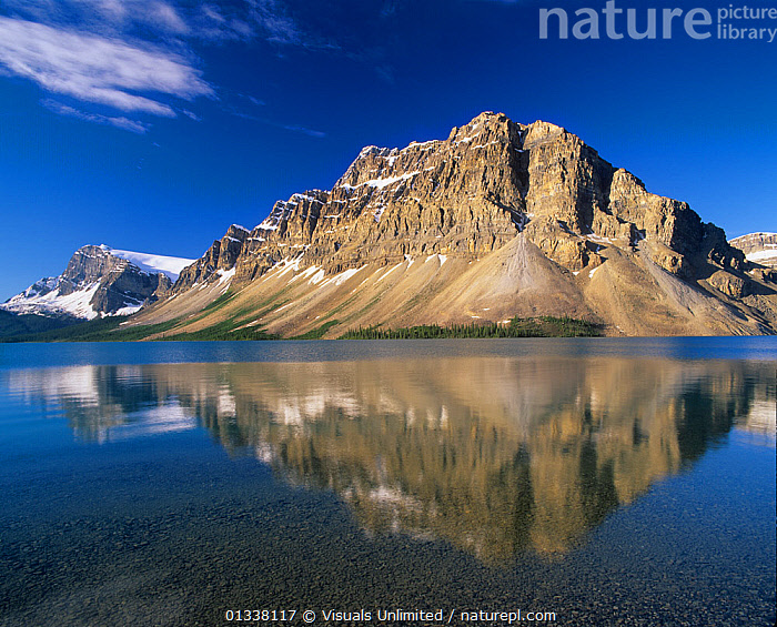 Crowfoot Mountain and Bow Lake, Banff National Park, Alberta, Canada.  ,  79754630,ADAM,ALBERTA,BANFF,BOW,CANADA,CANADIAN,CROWFOOT,JONES,LAKE,LAKES,LANDSCAPES,MOUNTAIN,NATIONAL,NORTH AMERICA,PARK,PARKS,REFLECTION,REFLECTIONS,ROCKIES,,Canadian Rocky Mountain Parks World Heritage Site, UNESCO World Heritage Site,Rocky Mountains,Rockies,NP,Reserve,  ,  Visuals Unlimited