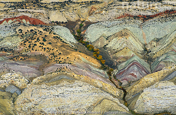 Aerial view of folded strata and a Dinosaur Quarry, Dinosaur National Monument, Colorado, USA.  ,  AERIALS,COLORADO,DINOSAUR,FOLD,FOLDING,FOLDS,GEOLOGY,JIM,LANDSCAPES,MONUMENT,NATIONAL,NORTH AMERICA,PHOTO,PHOTOGRAPH,QUARRY,USA,WARK  ,  Visuals Unlimited