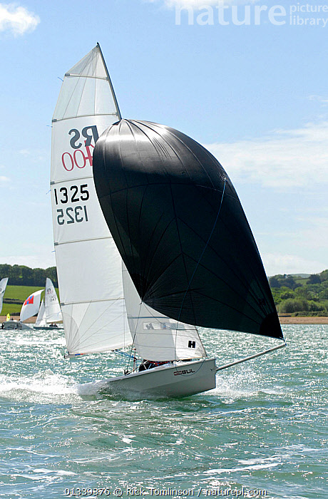 Boat under spinnaker in the sun during the RS400 Gull Grand Prix. Thorness Bay, Isle of Wight, England, May 2011.  ,  BOATS,COASTS,DINGHIES,ENGLAND,EUROPE,GULLS,MAINSAILS,RACES,SAILING BOATS,SPINNAKERS,SUNNY,UK,VERTICAL,SAILING-BOATS ,SAILS ,United Kingdom  ,  Rick Tomlinson