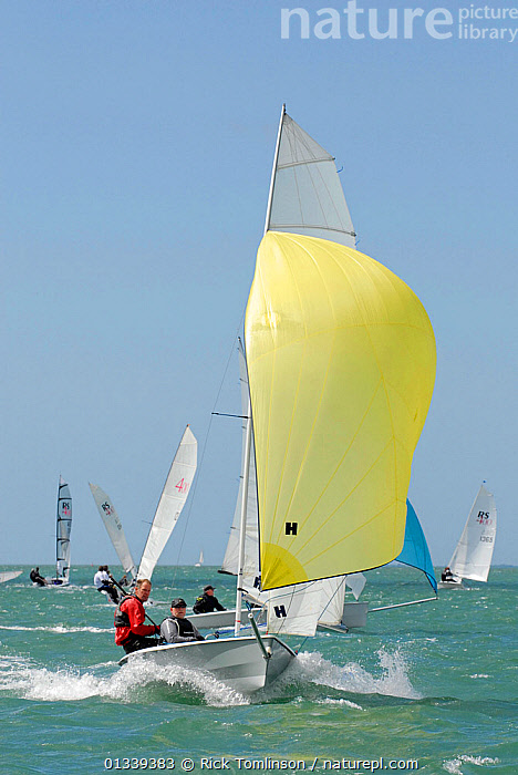 Boat racing under spinnaker during the RS400 Gull Grand Prix. Thorness Bay, Isle of Wight, England, May 2011.  ,  BOATS,CREWS,DINGHIES,ENGLAND,EUROPE,FLEETS,FRONT VIEWS,GULLS,PEOPLE,RACES,RACING,SAILING BOATS,SPINNAKERS,UK,VERTICAL,SAILING-BOATS ,SAILS ,United Kingdom  ,  Rick Tomlinson