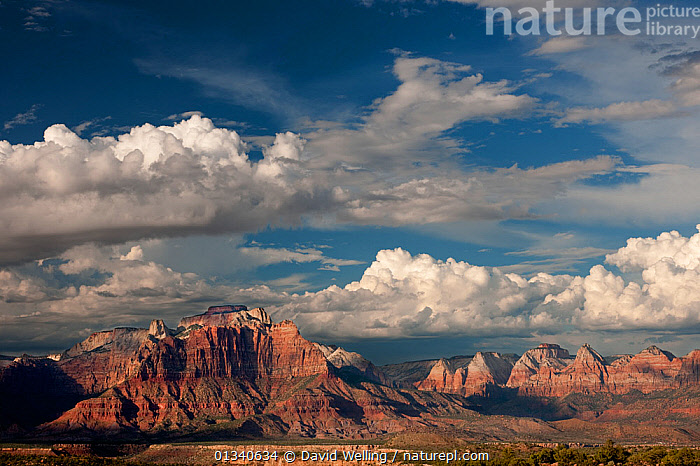 """Thunderstorms and clouds form over """"West Temple"""" and """"Zion"""" geological formations. Utah, USA, July., , in nature, CLOUDS, GEOLOGY, LANDSCAPES, MOUNTAINS, NORTH-AMERICA, ROCK-FORMATIONS, SKIES, SPACE, USA, WEATHER, David Welling"""