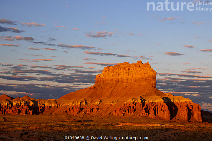 Wild Horse Butte sandstone formation. Near the entrance to Goblin Valley State Park, Utah, USA, August., GEOLOGY,LANDSCAPES,MOUNTAINS,NORTH AMERICA,NP,RESERVE,ROCK FORMATIONS,SKIES,USA,National Park, David Welling