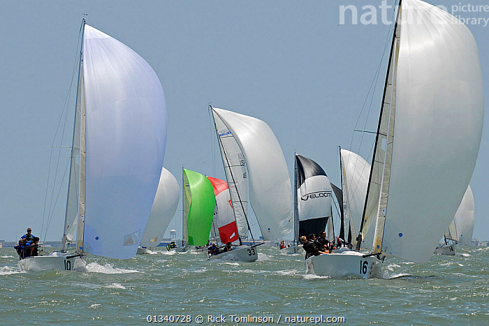 Fleet racing under spinnaker at the Melges 24 World Championships, Corpus Christi, Texas, USA, May 2011., BOATS,FLEETS,FRONT VIEWS,KEELBOATS ,MELGES ,NORTH AMERICA,RACES,RACING,SAILING BOATS,SPINNAKERS,USA,SAILING-BOATS,SAILS, Rick Tomlinson