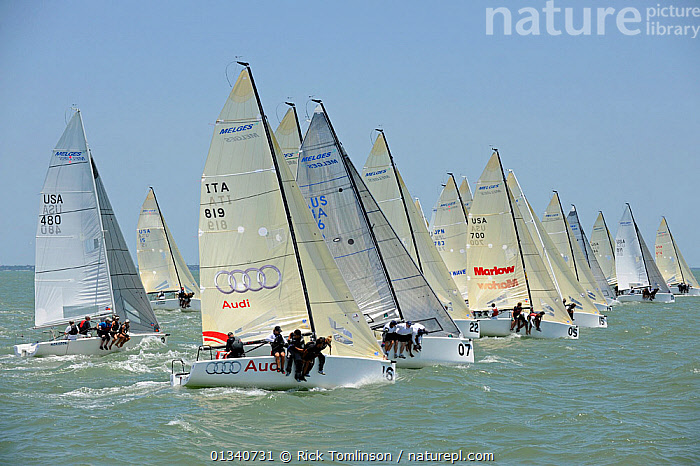 Fleet racing on day two of the Melges 24 World Championships, Corpus Christi, Texas, USA, May 2011., BOATS,CREWS,FLEETS,FORESAILS,HIKING OUT,KEELBOATS ,MAINSAILS,MELGES ,NORTH AMERICA,PEOPLE,PROFILE,RACES,RACING,SAILING BOATS,STARTS,USA,SAILING-BOATS,core collection xtwox, Rick Tomlinson