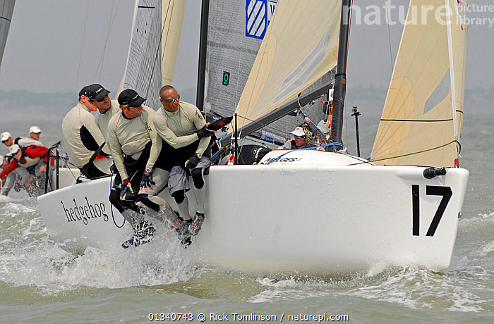 "Crew hiking-ut on board ""Hedgehog"" during a race on day six of the Melges 24 World Championships Corpus Christi, Texas, USA, May 2011., BOATS,CREWS,HIKING OUT,KEELBOATS ,MELGES ,MS,NORTH AMERICA,NUMBERS,PEOPLE,RACES,RACING,SAILING BOATS,USA,SAILING-BOATS, Rick Tomlinson"