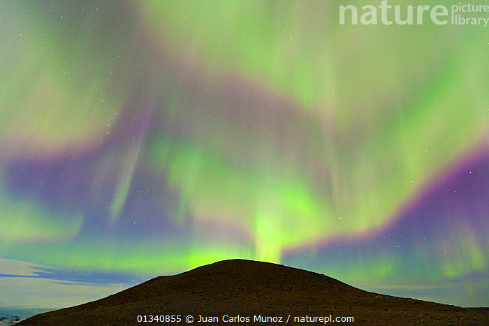 Northern lights (Aurora Borealis) in sky above a hill by Jokulsarlon glacier lagoon. Southern Iceland, Europe, March 2011., ARCTIC,ARTY SHOTS,AURORA,BEAUTY IN NATURE,BOREAL,EUROPE,HILLS,ICELAND,LANDSCAPES,LIGHTS,MOUNTAINS,NIGHT,SKIES, Juan Carlos Munoz