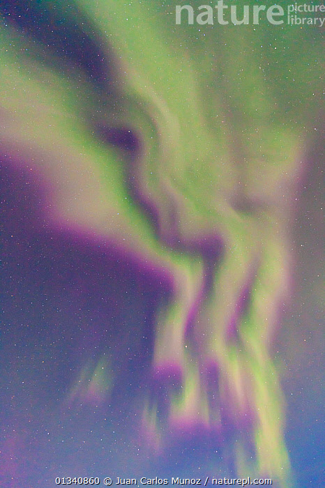 Looking up into the northern lights (Aurora Borealis). Jokulsarlon glacier lagoon, Southern Iceland, Europe, March 2011., ABSTRACT,ARCTIC,ARTY SHOTS,AURORA,BACKGROUNDS,BEAUTY IN NATURE,BOREAL,EUROPE,ICELAND,LIGHTS,NIGHT,PATTERNS,SKIES,VERTICAL, Juan Carlos Munoz