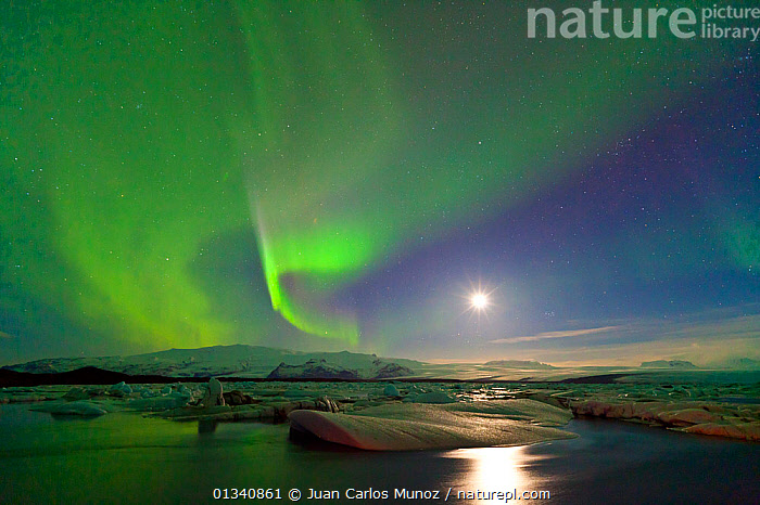 Northern lights (Aurora Borealis) and moon in sky above Jokulsarlon glacier lagoon. Southern Iceland, Europe, March 2011., ARCTIC,ARTY SHOTS,AURORA,BEAUTY IN NATURE,BOREAL,EUROPE,GREEN,ICE,ICELAND,LANDSCAPES,LIGHTS,MOON,NIGHT,PEACEFUL,SKIES,WATER,core collection xtwox, Juan Carlos Munoz