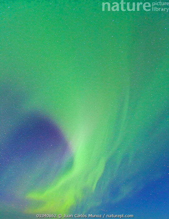 Looking up into the northern lights (Aurora Borealis) in sky,  Jokulsarlon glacier lagoon, Southern Iceland, Europe, March 2011., ABSTRACT,ARCTIC,ARTY SHOTS,AURORA,BACKGROUNDS,BEAUTY IN NATURE,BOREAL,EUROPE,GREEN,ICELAND,LIGHTS,NIGHT,PATTERNS,SKIES,VERTICAL, Juan Carlos Munoz