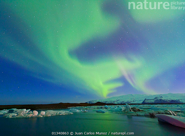 Northern lights (Aurora Borealis) in sky above Jokulsarlon glacier lagoon. Southern Iceland, Europe, March 2011., ARCTIC,ARTY SHOTS,AURORA,BEAUTY IN NATURE,BOREAL,COLOURFUL,EUROPE,ICE,ICELAND,LANDSCAPES,LIGHTS,NIGHT,SKIES,WATER,core collection xtwox, Juan Carlos Munoz