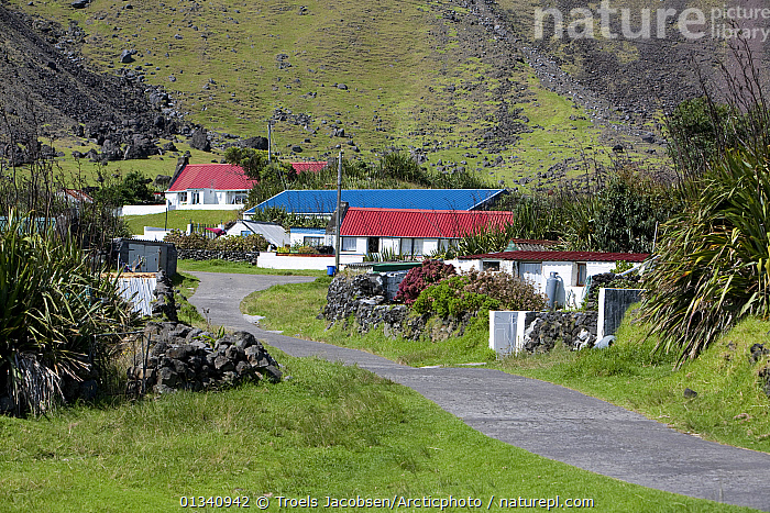 Houses in Edinburgh of the Seven Seas, the main settlement on Tristan da Cunha. South Atlantic Islands, March 2007., ATLANTIC ISLANDS,BUILDINGS,LANDSCAPES,MOUNTAINS,TRISTAN DA CUNHA,VILLAGES, Troels Jacobsen/Arcticphoto