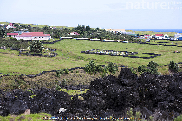 Houses and the cemetery in Edinburgh of the Seven Seas with solidified lava in the foreground. Tristan da Cunha, South Atlantic Islands, March 2007., ATLANTIC ISLANDS,BUILDINGS,CEMETERIES,GEOLOGY,LANDSCAPES,MOUNTAINS,TRISTAN DA CUNHA,VILLAGES, Troels Jacobsen/Arcticphoto
