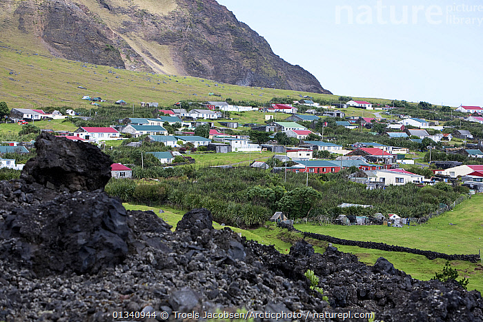 Houses in Edinburgh of the Seven Seas, the main settlement on Tristan da Cunha with solidified lava in the foreground. South Atlantic Islands, March 2007., ATLANTIC ISLANDS,BUILDINGS,GEOLOGY,LANDSCAPES,MOUNTAINS,TRISTAN DA CUNHA,VILLAGES, Troels Jacobsen/Arcticphoto