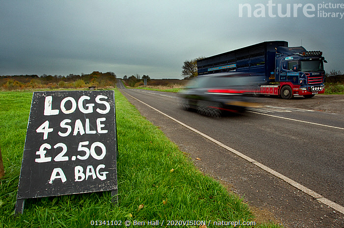 Logs for sale sign beside a busy road with passing traffic, The National Forest, Central England, UK, November 2010, 2020VISION,BHA_ 02_02112010_0032,BLURRED,CAR,CARS,DERBYSHIRE,ENGLAND,EUROPE,FORESTS,LEICESTERSHIRE,LORRY,RESERVE,ROADS,SIGNS,SPEED,STAFFORDSHIRE,TRADE,TRAFFIC,UK,VEHICLES,United Kingdom, Ben Hall / 2020VISION