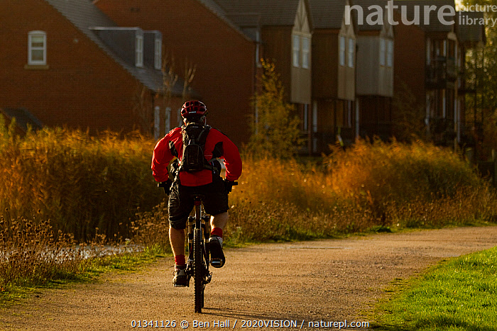Man riding bike down path by a river with houses in background, The National Forest, Central England, UK, November 2010, 2020VISION,BHA_ 02_03112010_0065,BUILDINGS,CYCLE PATH,CYCLING,DERBYSHIRE,ENGLAND,EUROPE,FORESTS,LEICESTERSHIRE,OUTDOORS,PATHS,PEOPLE,RESERVE,STAFFORDSHIRE,TOURISM,UK,United Kingdom, Ben Hall / 2020VISION