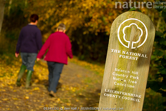 Two women walking down woodland path with National Forest sign in foreground, The National Forest, Leicestershire, UK, November 2010, 2020VISION,AUTUMN,BHA_ 02_03112010_0073,ENGLAND,EUROPE,FORESTS,LEICESTERSHIRE,LEISURE,OUTDOORS,PATHS,PEOPLE,RESERVE,SIGNS,TOURISM,UK,WALKING,WOMEN,WOODLANDS,United Kingdom, Ben Hall / 2020VISION