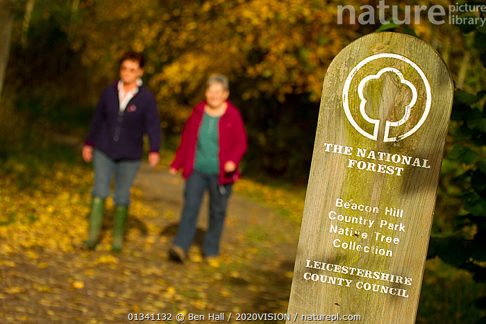 Two women walking down woodland path with National Forest sign in foreground, The National Forest, Leicestershire, UK, November 2010, 2020VISION,AUTUMN,BHA_ 02_03112010_0074,ENGLAND,EUROPE,FORESTS,LEICESTERSHIRE,LEISURE,OUTDOORS,PEOPLE,RESERVE,SIGNS,TOURISM,TWO,UK,WALKING,WOMEN,WOODLANDS,United Kingdom, Ben Hall / 2020VISION