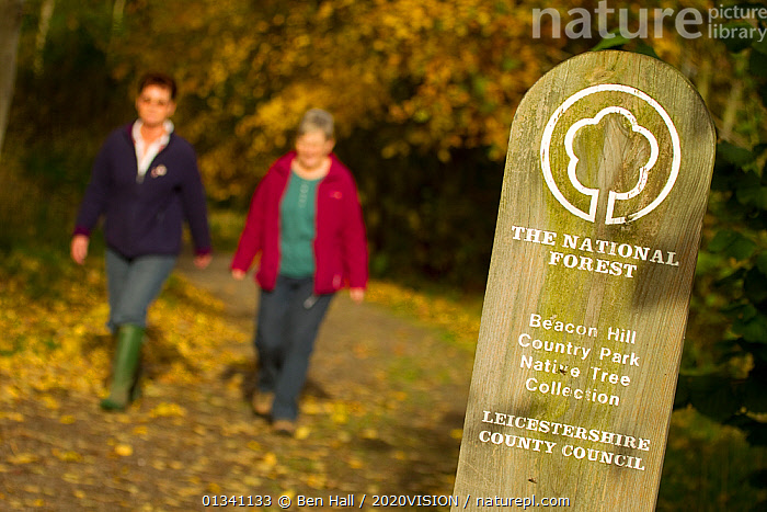 two women walking down woodland path with National Forest sign in foreground, The National Forest, Leicestershire, UK, November 2010, 2020VISION,BHA_ 02_03112010_0075,ENGLAND,EUROPE,FORESTS,LEICESTERSHIRE,LEISURE,OUTDOORS,PEOPLE,RESERVE,SIGNS,TOURISM,TWO,UK,WALKING,WOMEN,WOODLANDS,United Kingdom, Ben Hall / 2020VISION