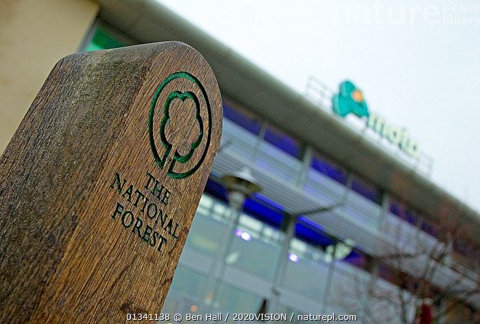 The National Forest sign and logo outside Moto service station, The National Forest, Central England, UK, November 2010, 2020VISION,BHA_ 02_03112010_0084,BUILDINGS,DERBYSHIRE,ENGLAND,EUROPE,FORESTS,LEICESTERSHIRE,LOW ANGLE SHOT,RESERVE,SIGNS,STAFFORDSHIRE,UK,WOODEN,United Kingdom, Ben Hall / 2020VISION