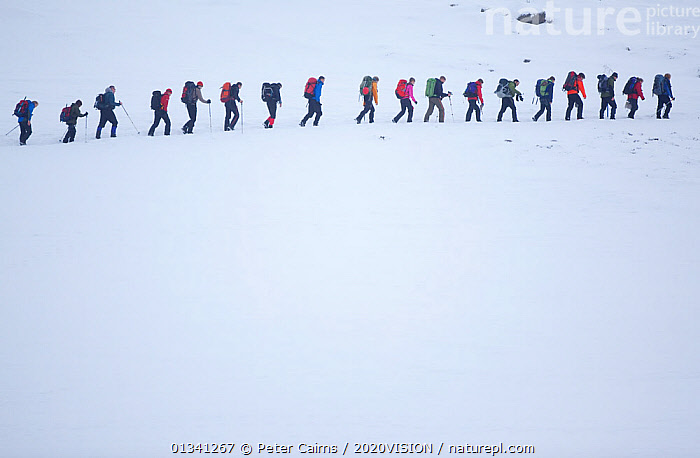 Line of mountain walkers in winter, Lochain Mountains, Cairngorms NP, Highlands, Scotland, UK, February 2010, ADVENTURE,CAIRNGORMS,CARRYING,GRAMPIAN,GROUPS,HIGH ANGLE,HIKERS,HIKING,LEISURE,LINES,MOUNTAINS,NATIONAL,OUTDOORS,PARK,PCA_3_111110_32,PEOPLE,ROWS,RUCKSACKS,SCOTLAND,SNOW,WALKING,WHITE,WINTER,Europe,UK,United Kingdom, Peter Cairns / 2020VISION