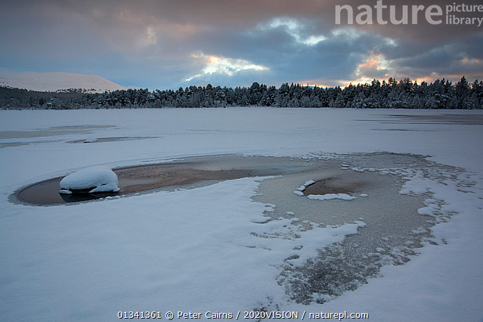 Loch Morlich frozen over in winter, Cairngorms NP, Highlands, Scotland, UK, December 2010, 2020VISION,CAIRNGORMS,EUROPE,FORESTS,ICE,LAKES,LANDSCAPES,NATIONAL,PARK,PCA_14_281210_28,RESERVE,SCOTLAND,SNOW,UK,WATER,WINTER,United Kingdom, Peter Cairns / 2020VISION