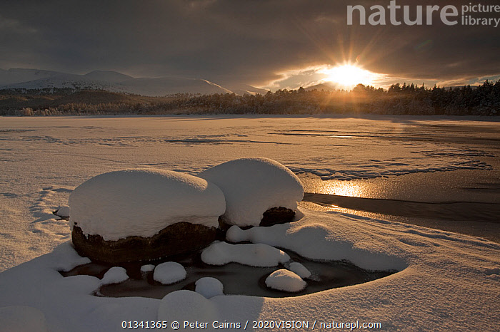 Loch Morlich frozen over with low winter sun shining through clouds, Cairngorms NP, Highlands, Scotland, UK, December 2010, 2020VISION,CAIRNGORMS,EUROPE,FORESTS,ICE,LAKES,LANDSCAPES,NATIONAL,PARK,PCA_14_281210_36,SCOTLAND,SNOW,SUN,UK,WATER,WINTER,United Kingdom, Peter Cairns / 2020VISION