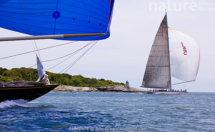 """J-Class yachts """"Velsheda"""" and """"Ranger"""" racing in the J Class Regatta, Newport, Rhode Island, USA, June 2011. All non-editorial uses must be cleared individually.  ,  BOATS,BOWS,CLASSICS,COASTS,J CLASSES,MAINSAILS,NORTH AMERICA,PROFILE,RACES,RACING,SAILING BOATS,SPINNAKERS,SUPERYACHTS,USA,YACHTS,BOAT-PARTS,SAILS ,core collection xtwox  ,  Billy Black"""
