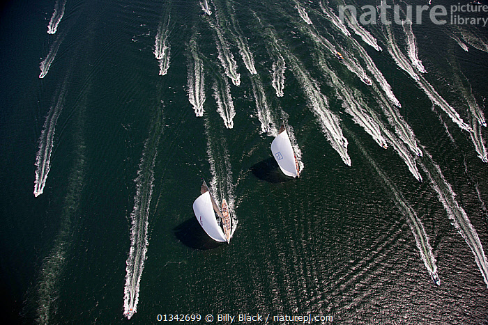 "Aerial view of J-class yachts ""Ranger"" and ""Velsheda"" pursued by support boats during the J Class Regatta, Newport, Rhode Island, USA, June 2011. All non-editorial uses must be cleared individually., AERIALS,BOATS,CLASSICS,FREEDOM,FRONT VIEWS,J CLASSES,MIXED BOATS,NORTH AMERICA,RACES,RACING,SAILING BOATS,SPEED,SPINNAKERS,SUPERYACHTS,SUPPORT BOATS,USA,WAKE,WIND,YACHTS,CONCEPTS,SAILS ,Weather, Billy Black"