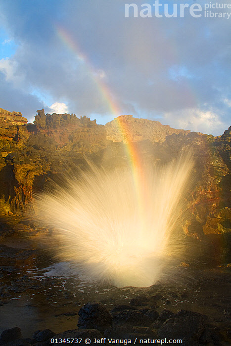 Nakalele Point Blowhole with spray and a resulting rainbow. West Maui, Hawaii, September 2010., blowhole,California,catalogue4,COASTS,DRAMATIC,elevated view,Hawaii,LANDSCAPES,meteorology,MIST,Nakalele Point Blowhole,nature,Nobody,NORTH AMERICA,Rainbow,RAINBOWS,SPRAY,USA,VERTICAL,water spray,West Maui,CONCEPTS,WEATHER, Jeff Vanuga