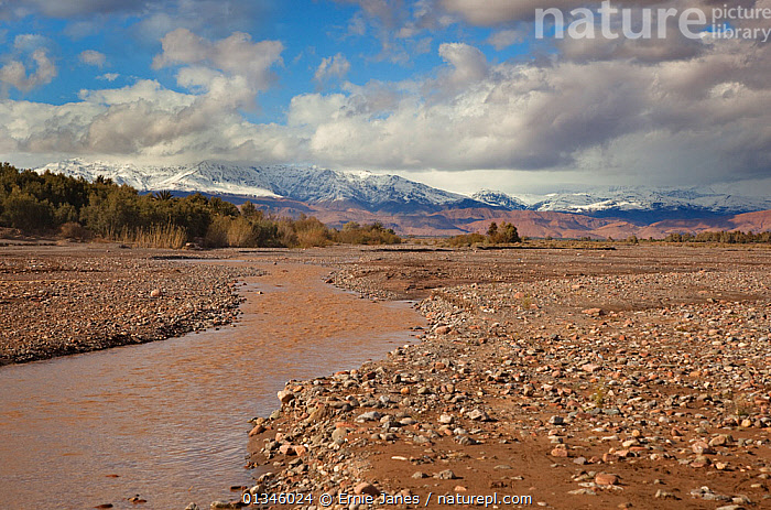 A river and the Atlas Mountains. Skoura Oasis, Morocco, North Africa, March 2011  ,  AFRICA,ARID,DESERTS,DRY,LANDSCAPES,MOROCCO,MOUNTAINS,NORTH AFRICA,RIVERS,SPACE,WATER  ,  Ernie Janes