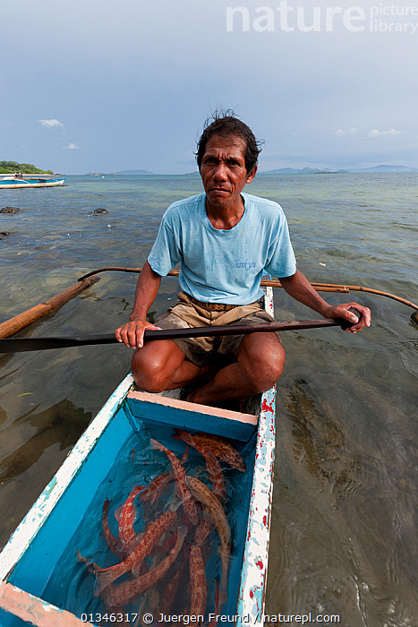 Hook and line fisherman with his day's catch of a dozen live Coral trout (Plectropomus leopardus) to sell to a Live Reef Fish grower, Palawan, Philippines, May 2009.  ,  ASIA,BOATS,CANOES,CORAL TRIANGLE,DUGOUTS,FISH,FISHING,INDO PACIFIC,MAN,MARINE,OUTDOORS,OUTRIGGERS,PHILIPPINES,TRADE,TRADITIONAL,TROPICAL,VERTICAL,WOODEN,,OPEN-BOATS,PEOPLE ,SOUTH-EAST-ASIA  ,  Jurgen Freund