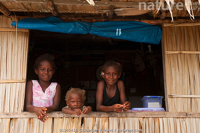 Three young Melanesian girls looking out from their kitchen window, Kolombangara, Western Province, Solomon Islands, July 2010.  ,  ASIA,BABIES,BUILDINGS,CHILDREN,CORAL TRIANGLE,GIRLS,INDOORS,INDO PACIFIC,MELANESIA,PACIFIC,PEOPLE,SOLOMON ISLANDS,THREE,VILLAGES,  ,  Jurgen Freund
