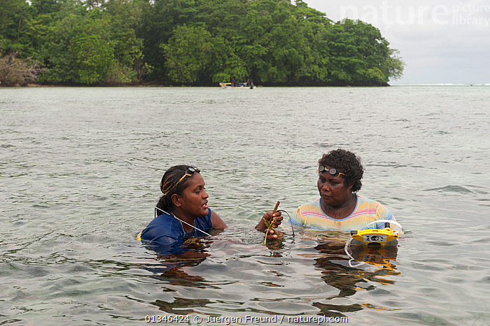 Tetepare women monitor seagrass growth as part of the conservation programme of the Tetepare Descendants Association, Tetepare Island, Western Province, Solomon Islands, Melanesia, July 2010  ,  ASIA,COASTAL WATERS,CORAL TRIANGLE,INDO PACIFIC,MELANESIA,OUTDOORS,PACIFIC,RESEARCH,SEA GRASS,SOLOMON ISLANDS,SWIMMING,TWO,WOMEN,,PEOPLE  ,  Jurgen Freund