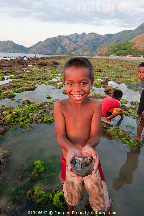 Child holding out bowl of produce from gleaning on coast at low tide for marine invertebrates and small fish and algae, East Timor, August 2010.  ,  CHILD,CHILDREN,COASTS,CORAL TRIANGLE,INDO PACIFIC,LANDSCAPES,LITTORAL,SOUTH EAST ASIA,VERTICAL,,Intertidal  ,  Jurgen Freund