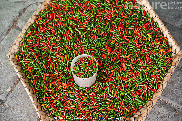 Red and green Chillis for sale at the vegetable market in Dili, East Timor, August 2010  ,  basket,catalogue4G,chilli,close up,COLOURFUL,coral triangle,cup,Dili,East Timor,fresh produce,GREEN,green chilli,HIGH ANGLE SHOT,INDO PACIFIC,large group of objects,local produce,Market,Nobody,RED,red chilli,SOUTH EAST ASIA,street market,TRADE,vegetable market,VEGETABLES,WWF,JURGEN  ,  Juergen Freund