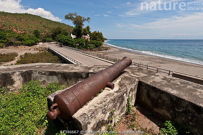 Original cannon in the Maubara Fort, used for defence during the Portuguese occupation, East Timor, August 2010.  ,  BUILDINGS,CASTLES,COASTS,CORAL TRIANGLE,GUN,GUNS,INDO PACIFIC,LANDSCAPES,PEOPLE,ROADS,SOUTH EAST ASIA,  ,  Jurgen Freund
